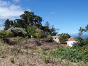 Mit dem Mietwagen die ländliche Seite von Teneriffa entdecken