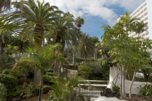 Hotel Maritim Grünpflanzen Garten Park