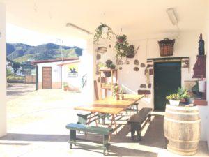 Überdachte Terrasse Finca Ferienhaus Tegueste