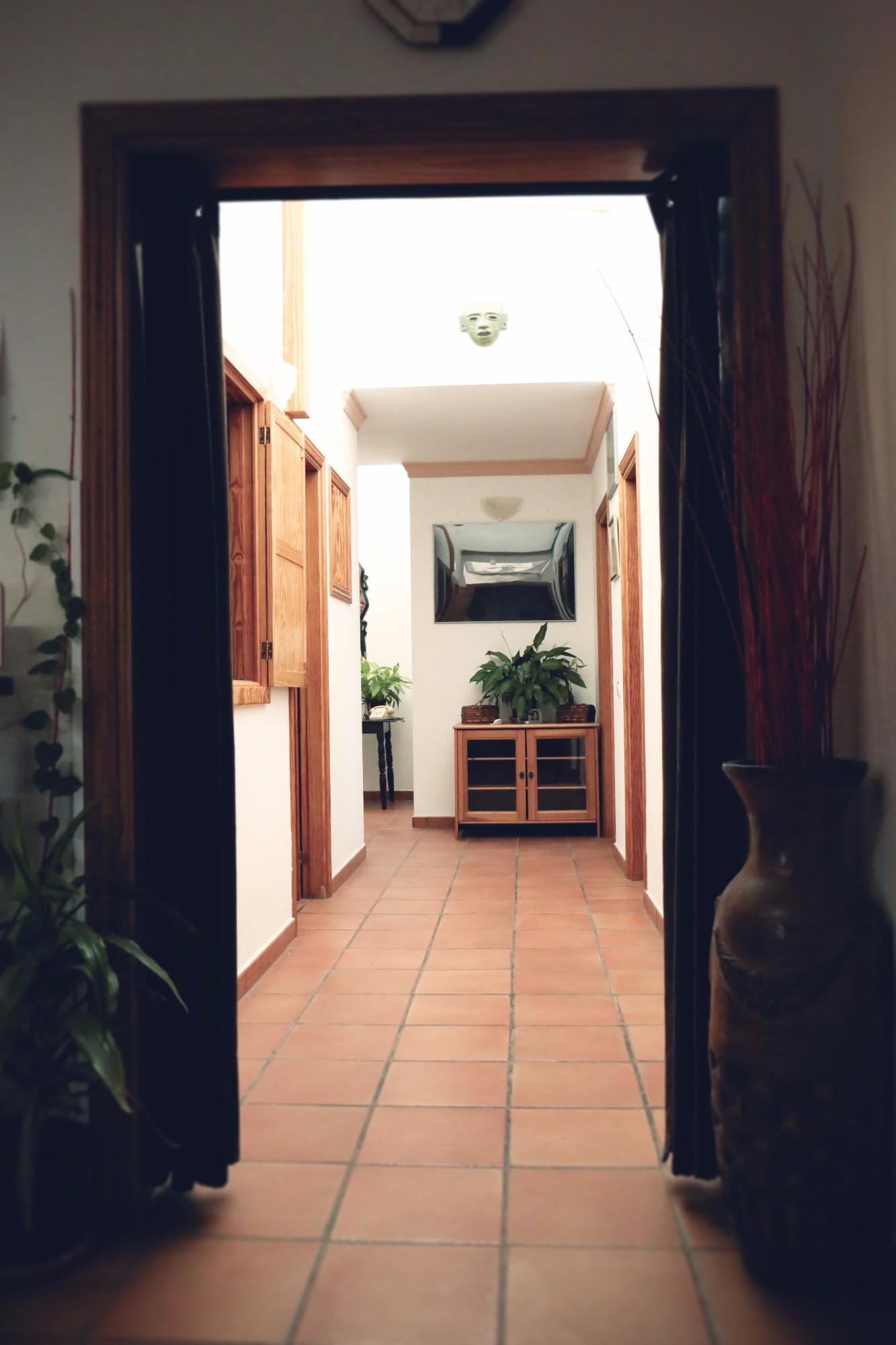 Ferienhaus Tegueste Finca Flur