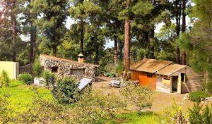 Waldrandgrundstück Ferienhaus La Guancha