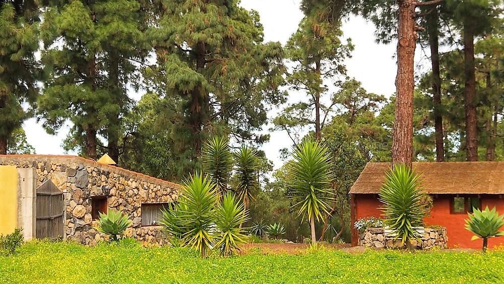 Ferienhaus La Guancha Wandern zwei Häuser
