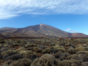 Teide Jeep Safari