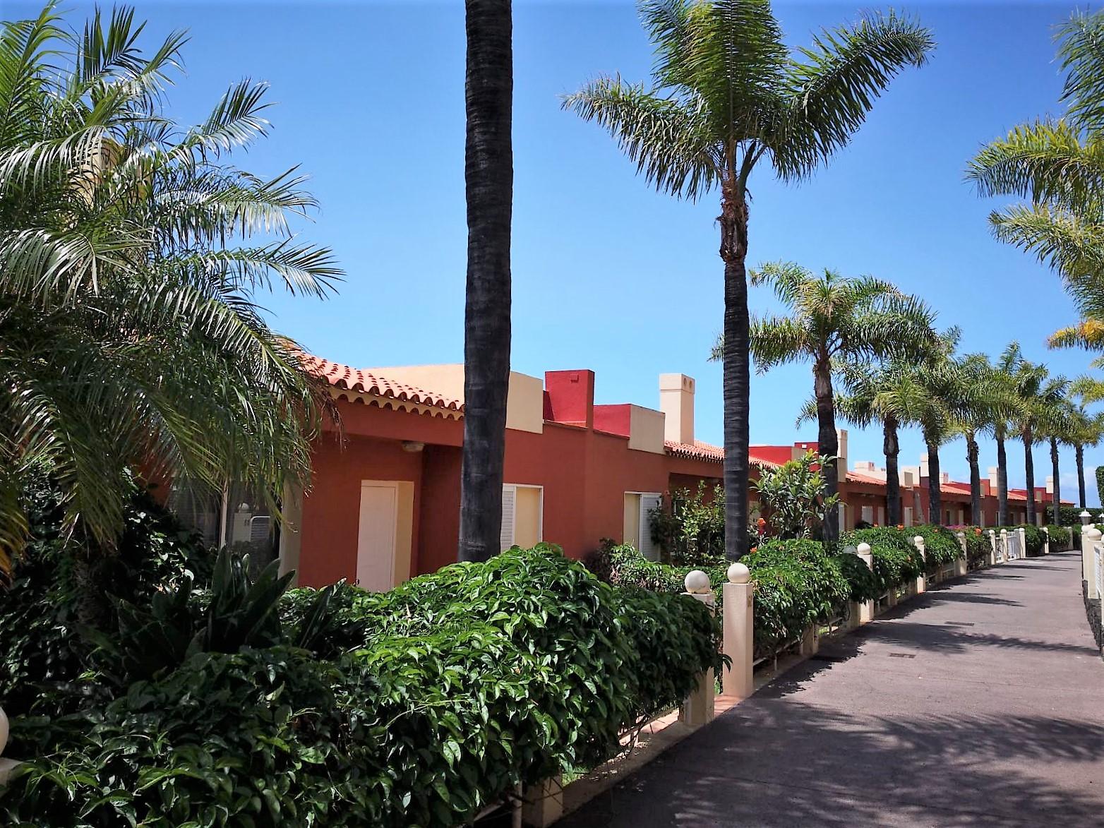 Ferienhaus Teneriffa Nord La Quinta Außenanlage