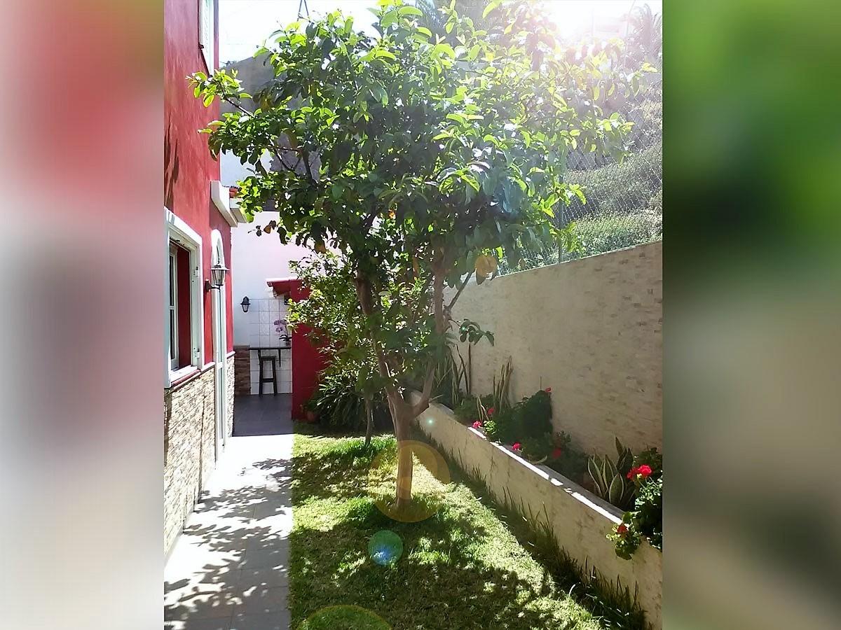 Außenanlage Studio mit Pool La Romantica Teneriffa Nord