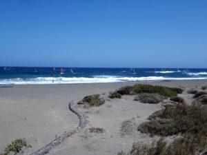 Surfen Windsurfen El Medano