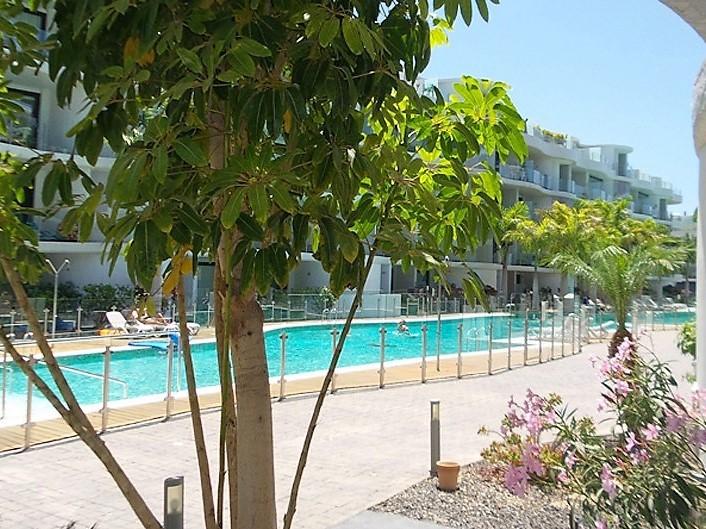 Ferienwohnung Areca Palm Mar mit Pool 2